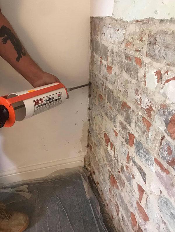 Cellars Damp Proof