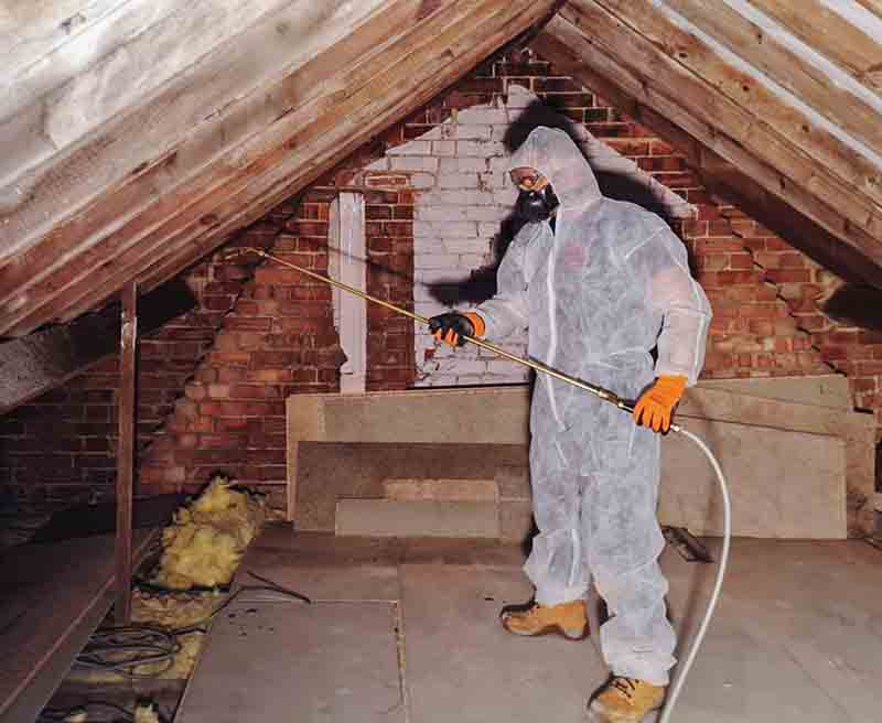 Spraying for woodworm treatment in Norwich